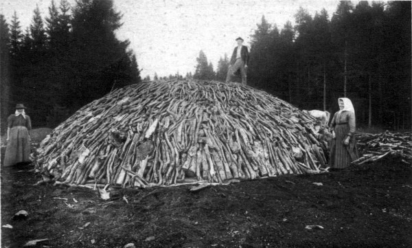 Charcoal_pile_05_600x361