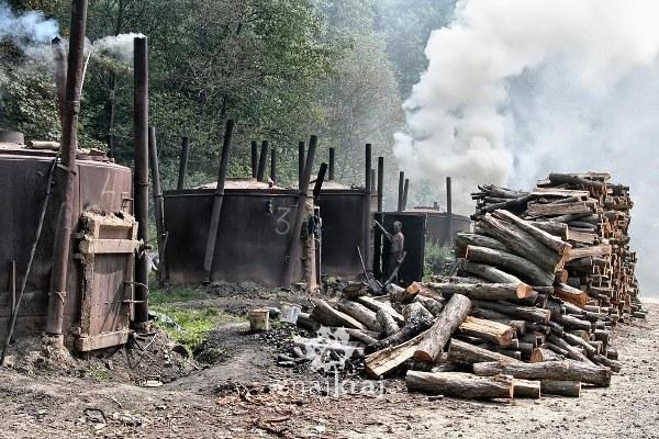 wypalanie-wegla-drzewnego-na-otrycie-bieszczady-2007-szymon-nitka-0912_600x400
