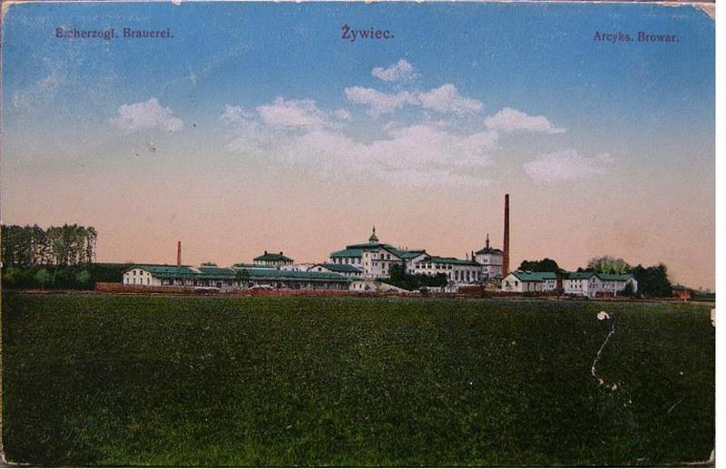 1917_800x517