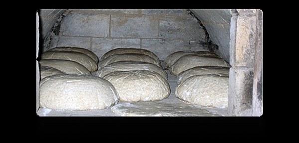 chlebowy2vvvvvvvvvvvvvvv_600x288