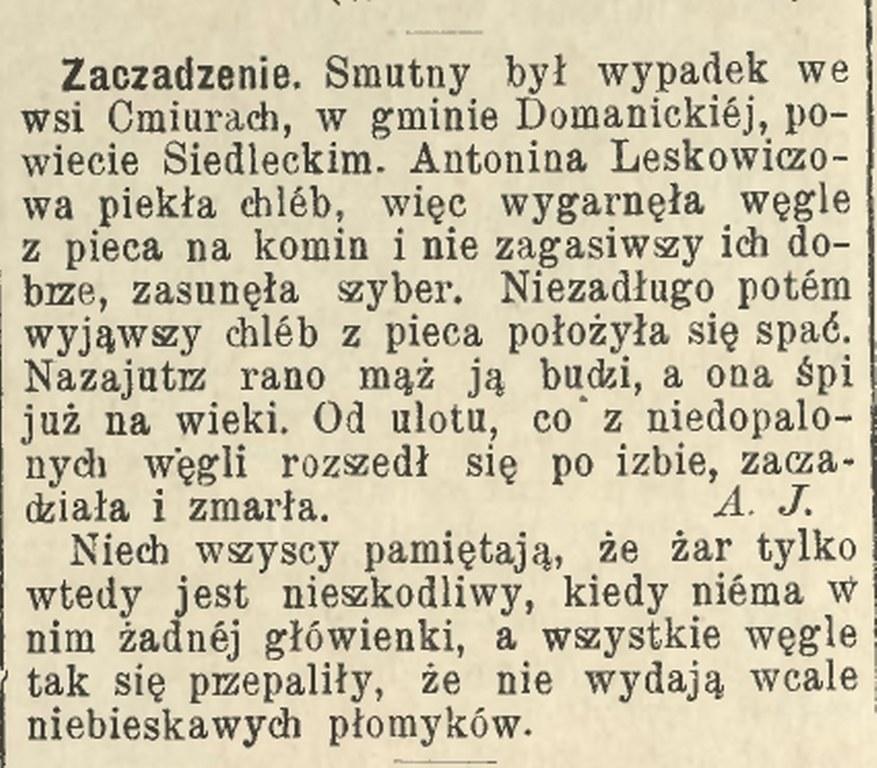 1891-2_877x768